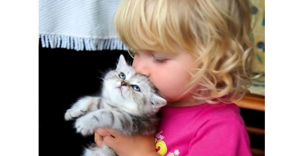 Pets Help Children Communicate