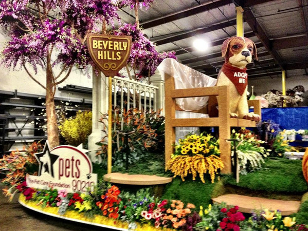 Happy New Year! Rose Bowl Parade Features Pet Floats!