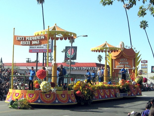 Happy New Year! Rose Parade Review