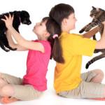Pets Comfort Kids