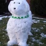 Winter Fun – Snow Dogs!