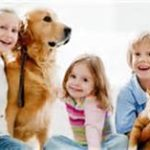 Why Kids Need Pets – Bullying